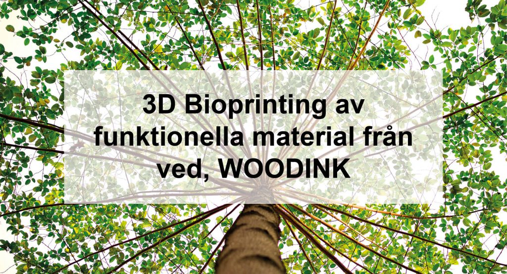 bild_3dbioprinting