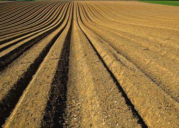 Restströmmar från skog och jordbruk ska bli grön olja för drivmedelsproduktion