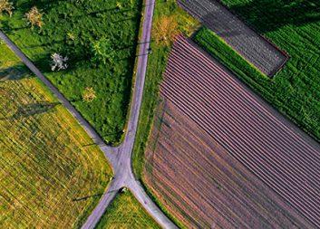 11 nya projekt för biobaserad utveckling