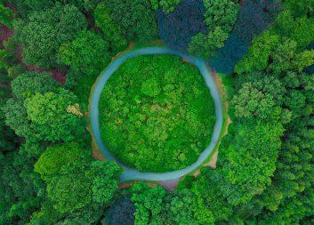 Ny regional statistik över bioekonomi