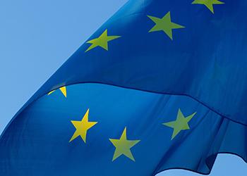 Ta möjligheten att söka stöd för att planera en Horisont Europa-ansökan!